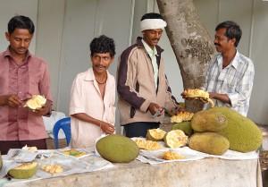 Bangalore_Indien_16-210620110277 Kopie