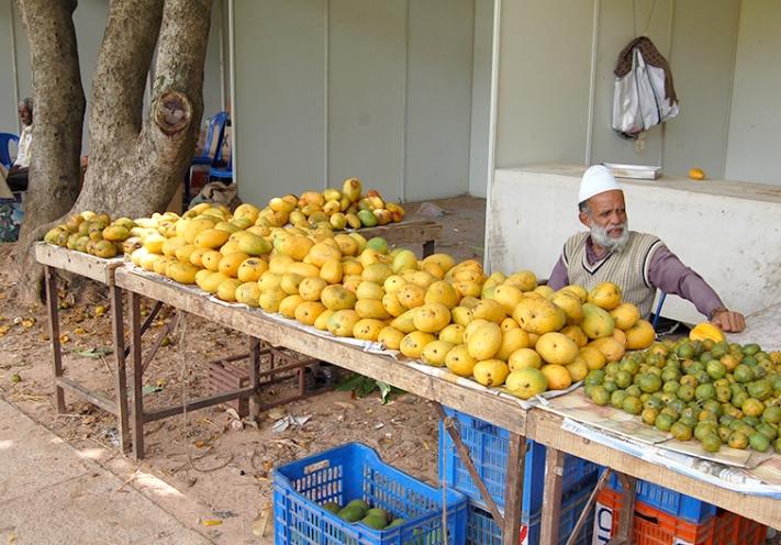 Bangalore_Indien_16-210620110278-Kopie