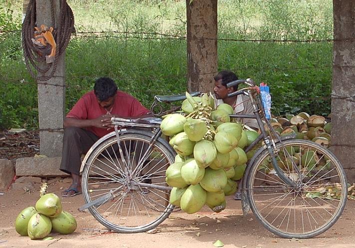 Bangalore_Indien_L